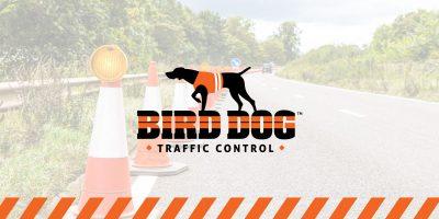 BDTC-press-release-title-graphics