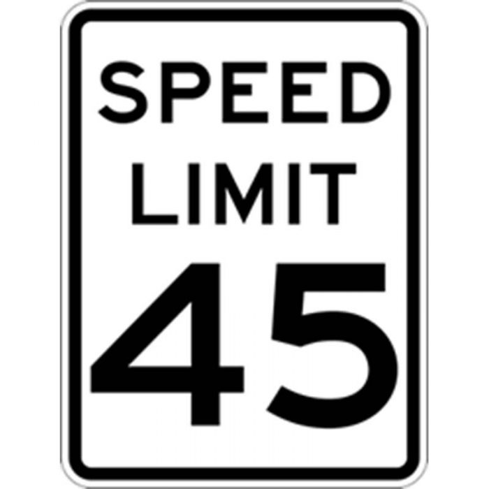 Bird Dog Traffic Control - Reduce Speed Ahead To 45 Sign